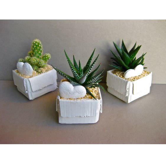 Serie scatoline
