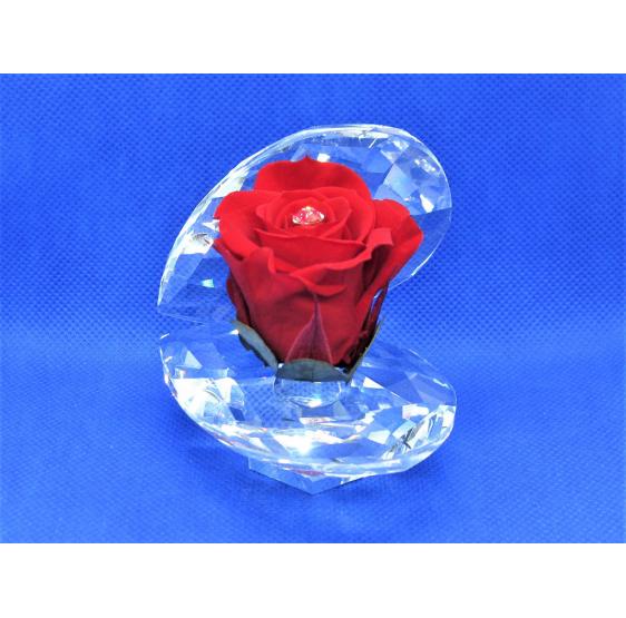 Ostrica cristallo con rosa stabilizzata
