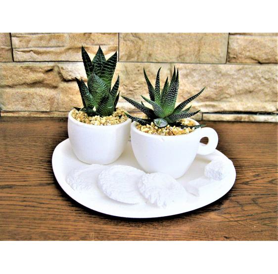 vassoio con 2 tazze caffè